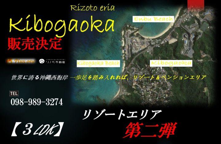 世界の誇る、沖縄西海岸エリア!